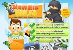 Newbie Ninja